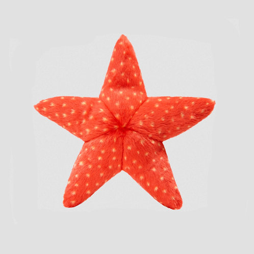 Ziggy Starfish (Medium)