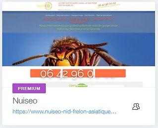 Nuiséo  Recherche de nuisibles, destruction de nid de frelon à Izon -Libourne  www.nuiseo-nid-frelon-asiatique.comcreation site internet et landing page bordeaux referencement bordeaux