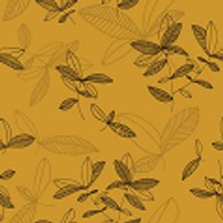 Ficus_meripihka1