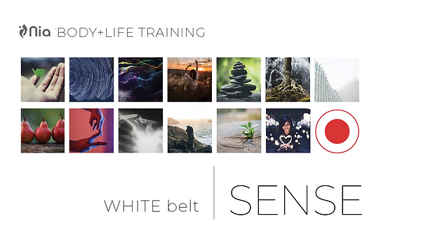 Nia White Belt Sense picture.png