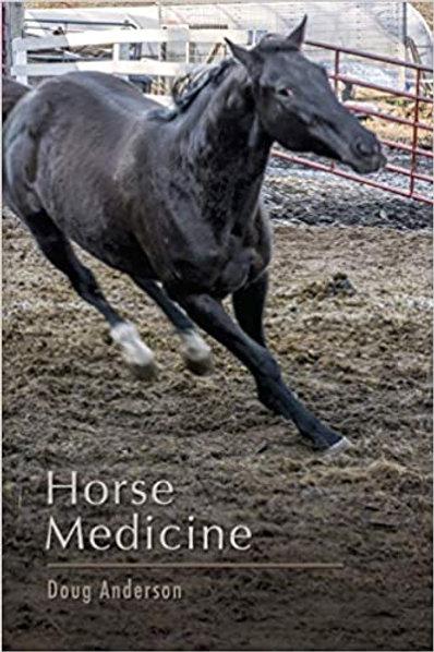 Horse Medicine 1st Edition