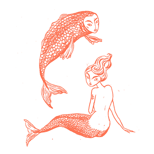 Stjernetegnfisk