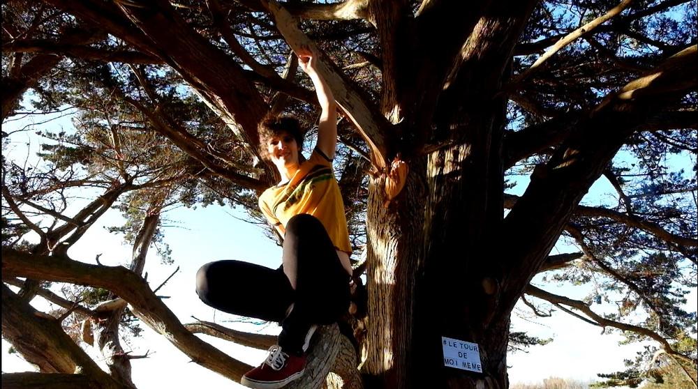le-tour-de-moi-même-mathilde-boileau-arbre-foret-voyage