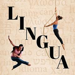 Lingua new design 300 x 300-01 (1).jpg