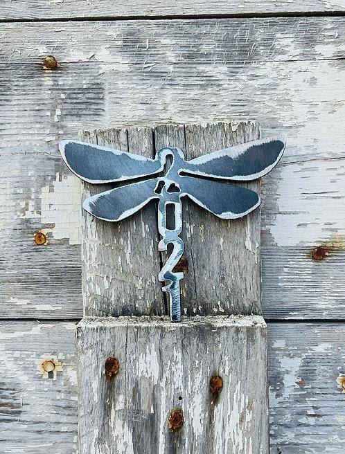 2021 Dragonfly