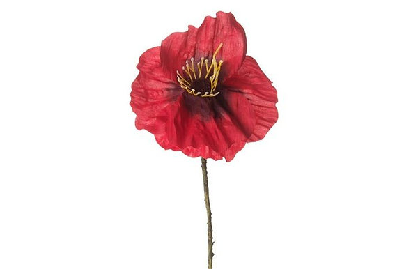 Light Red Poppy
