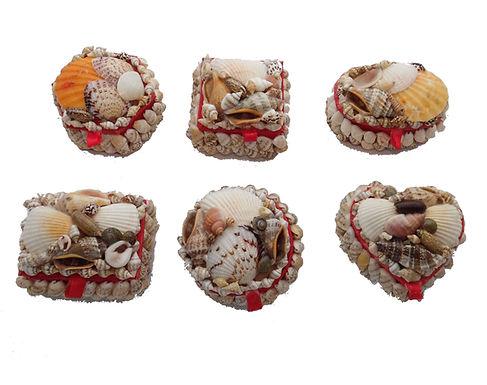 Shell Trinket Box