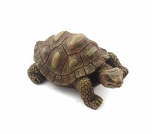 Small Resin Tortoise