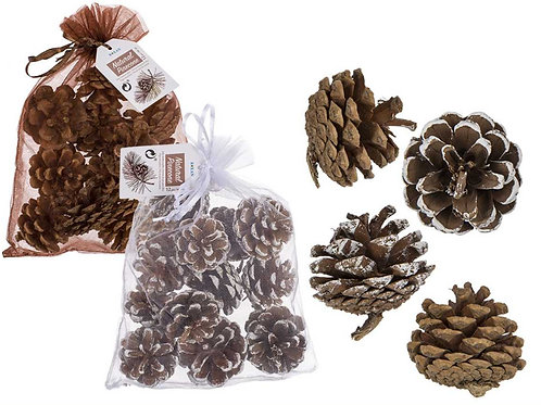 Bag of 12 Pine cones