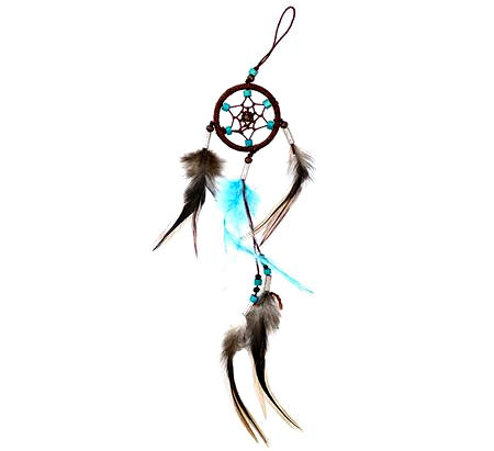 Turquoise Brown Dreamcatcher