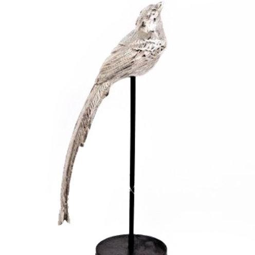 Bird On Stand