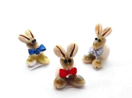 Mini Shell Rabbit