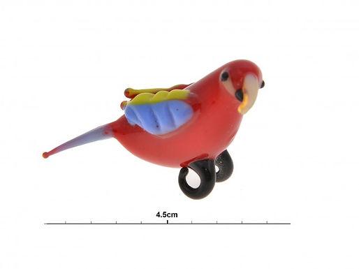 Glass Parrot