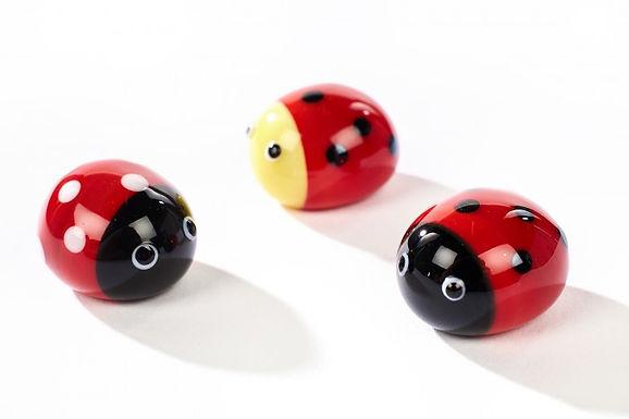 Glass Ladybird