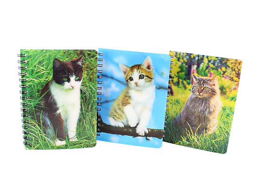 Hologram Cat Notebook
