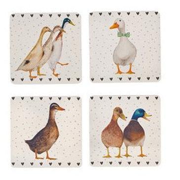 Ducks Coaster