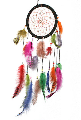 Multi Coloured Dreamcatcher