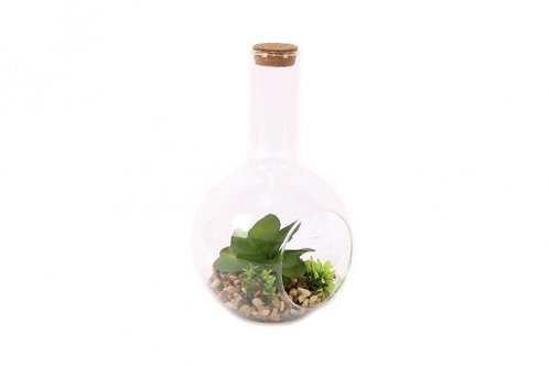 Cactus In Glass Bottle