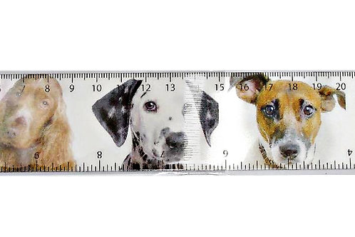 Dog Ruler