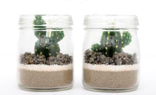 Cactus Candle In Jar