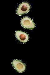 avocado3_edited.png