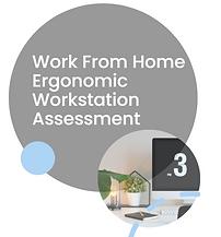 Ergonomic Assessment.PNG