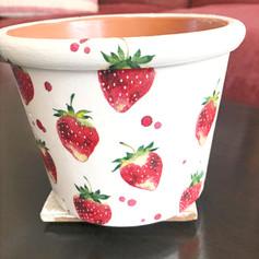 """""""Strawberries and Cream"""""""
