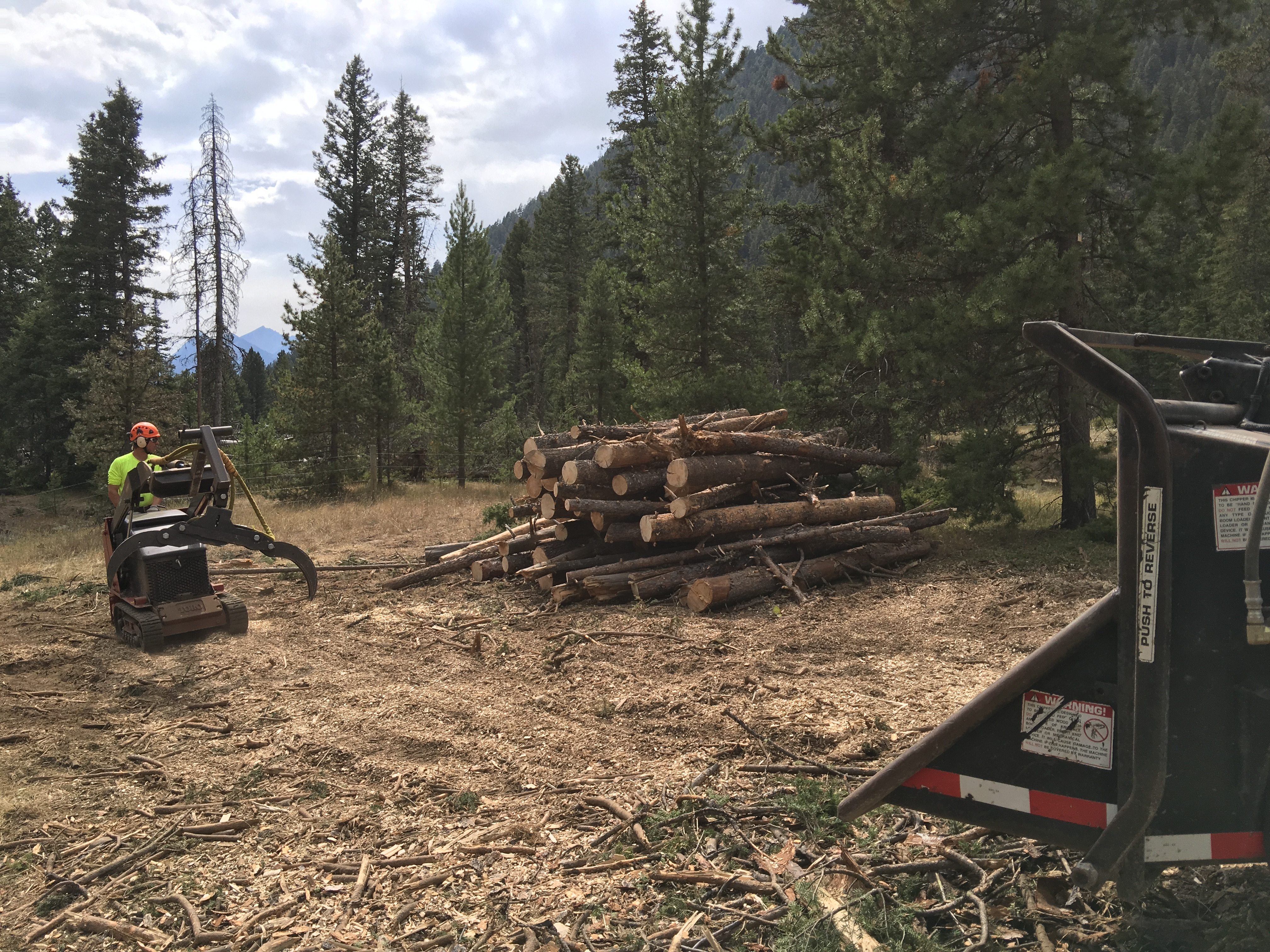 Fuels Reduction and Forestry