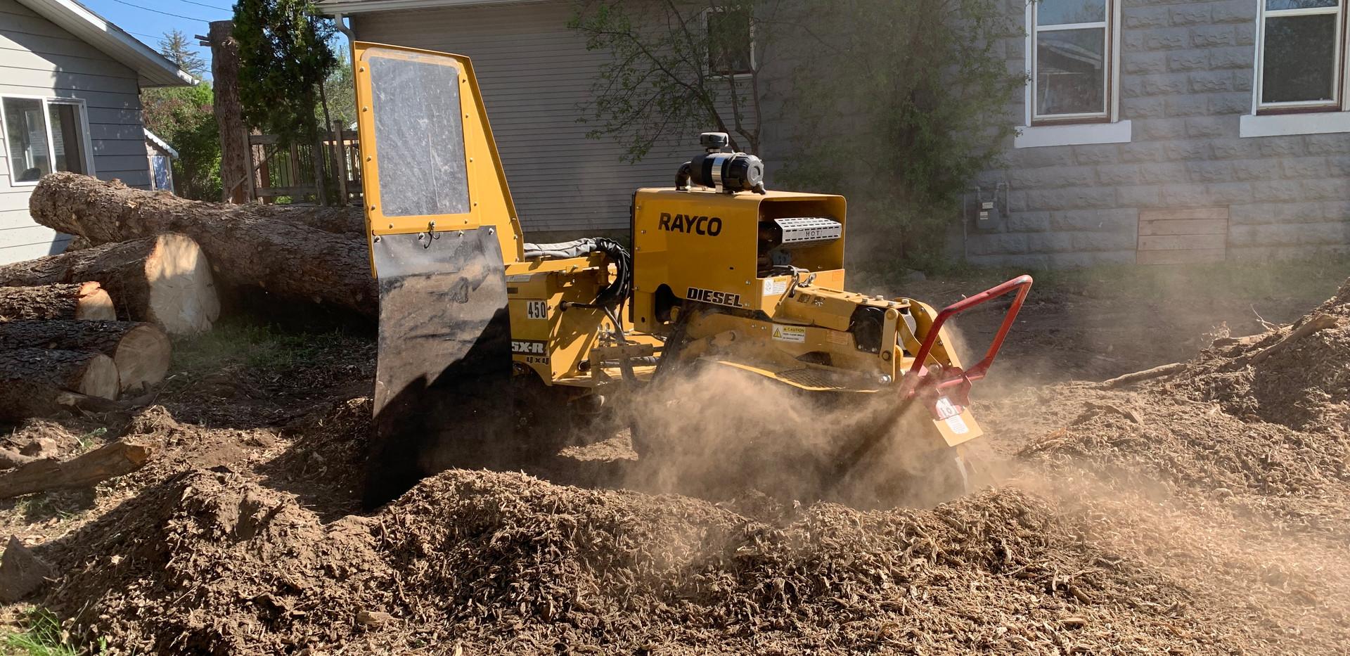 Stump Removal Bozeman.jpeg