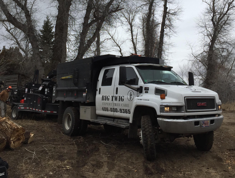 Ennis, MT Tree Services