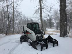 Tree Removal Bozeman, MT