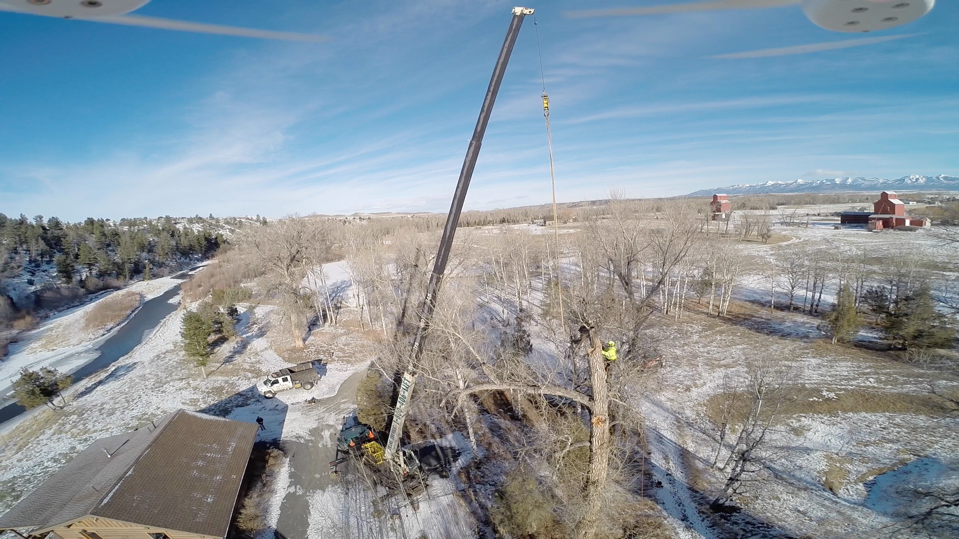 Tree Removal Park County, MT