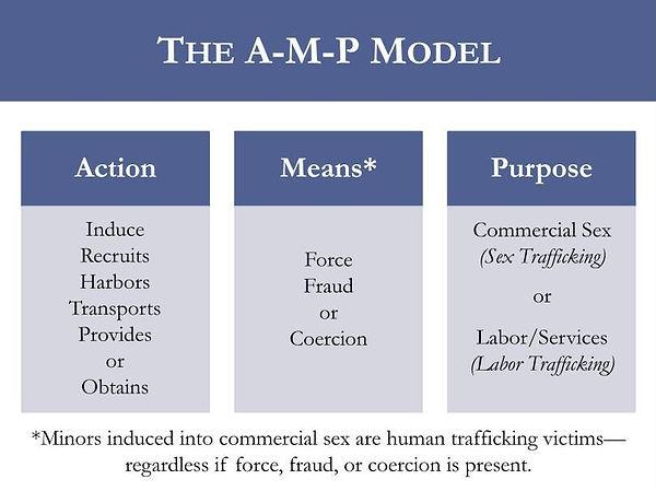 AMP Model.jpg