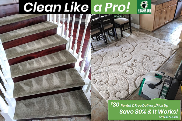 clean stairs carpet in a house.png