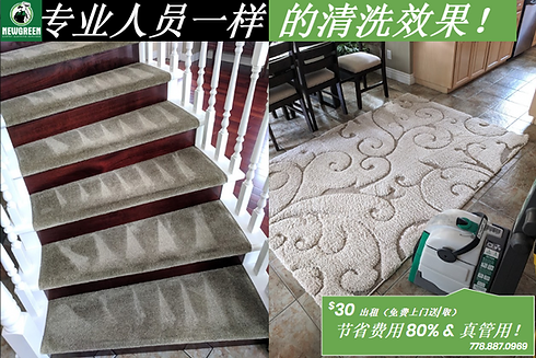 clean stair carpet in a house.png
