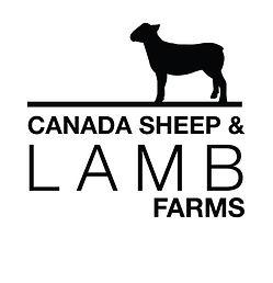 Canada Sheep & Lamb bw.jpg
