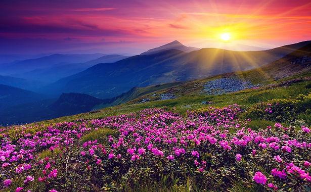 Spiritual-Climate-Newsletter-April.jpg