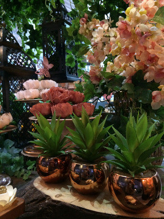 Vasos decorativos com suculentas