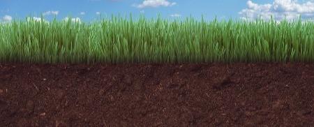 Parashat Breishit - Regenerating our Relationship with Soil