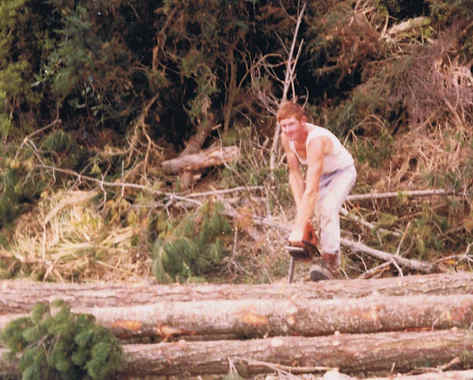 Dad (Lincoln) chopping Pines