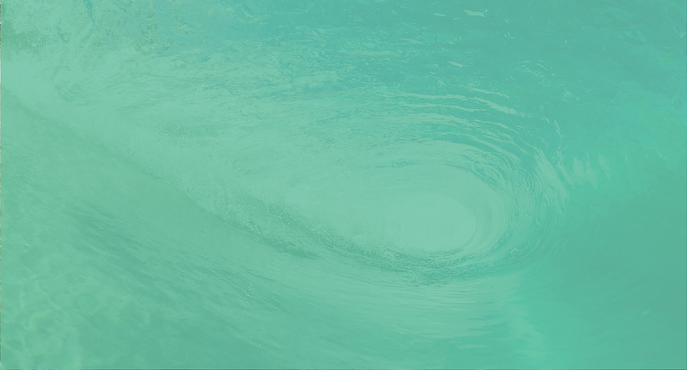 MWPortfolio_Duck_Dive_Web_Optimization-0