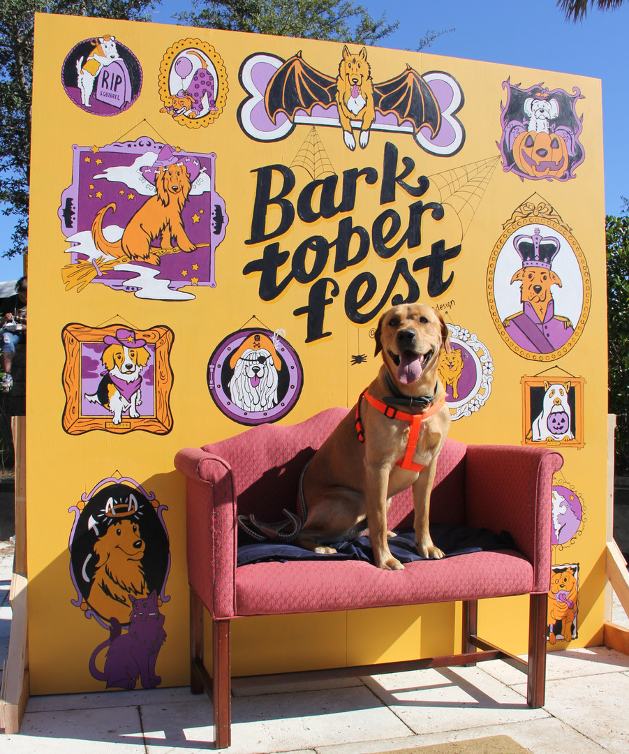 Barktoberfest_Slideshow_Export_10_300-12