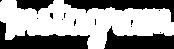 NSR - Social Media Logo Instagram.png