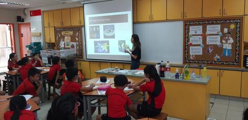 classroom programmes