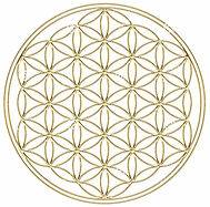 blomma-av-guld-liv-isloated-på-med-bakgr