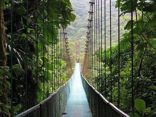 Monteverde Sky Bridge Costa Rica