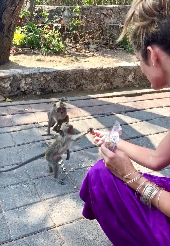 uluwatu temple feeding monkeys