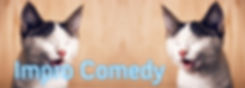 Impro Comedy.jpg