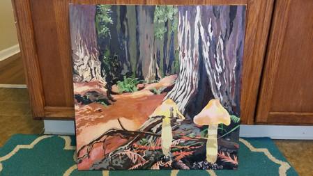 Redwood Forest (Desiree Nordstrand)