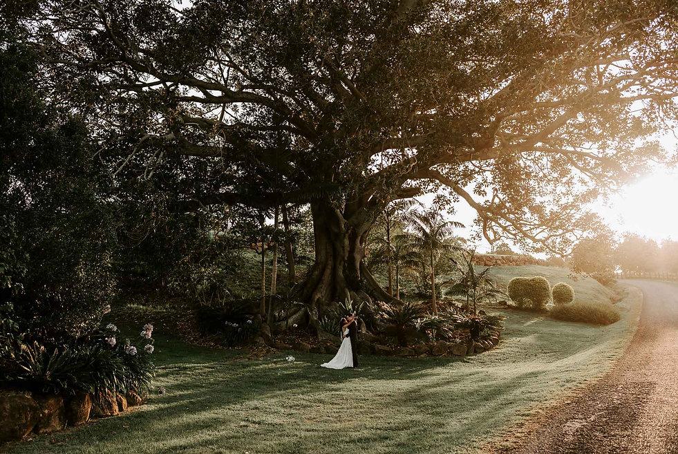 Daniel Suarez Wedding Photographer Summergrove